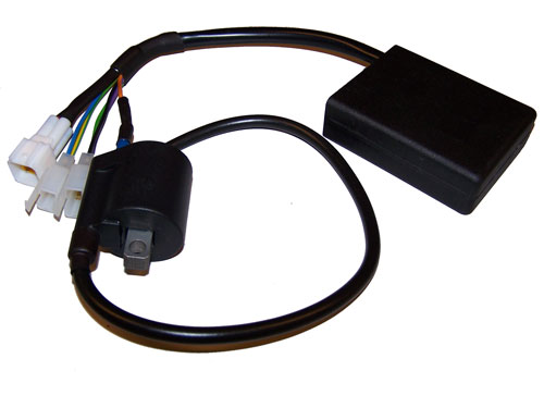 Programmable Plug&Play CDI ignition kit for Rotax Max Kart